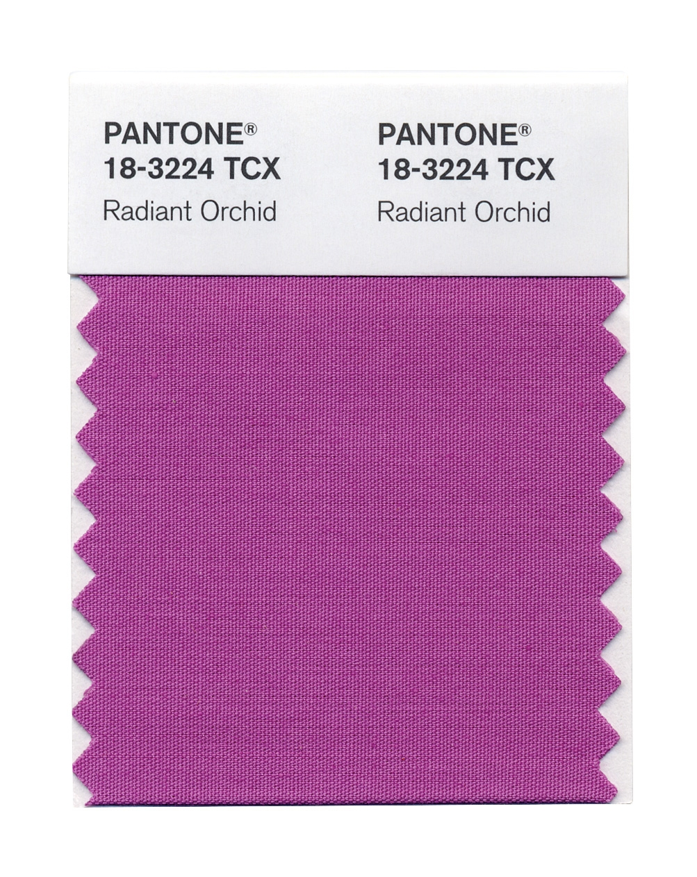 Get Radiant Orchid