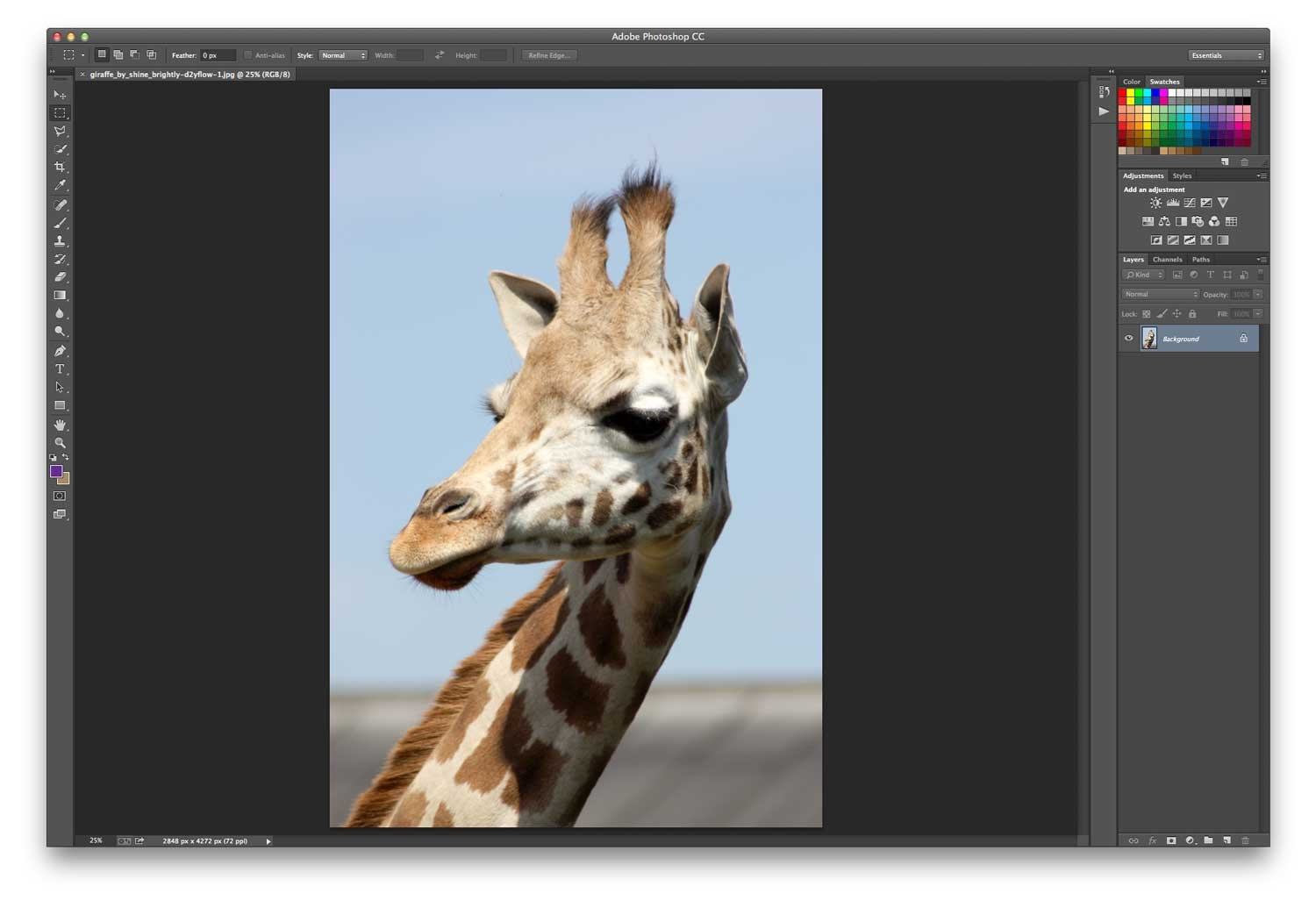 how to change background in photoshop cs4 step by step