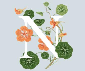 Charlotte Days serene compositions of hand-painted flora and lettering